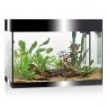 Aquariums & cabinets